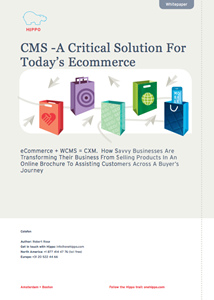 CMS - A Critical Solution For Today's Ecommerce
