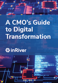 A CMO's Guide to Digital Transformation