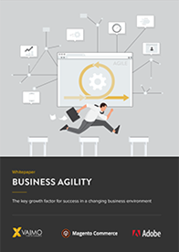 Business Agility Report