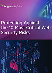 Protecting Against the 10 Most Critical Web Security Risks