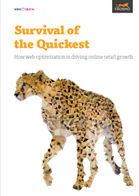 Survival of the Quickest: How web optimization is driving online retail growth