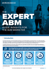 Expert ABM: Insights for the B2B Marketer