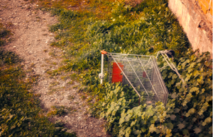 5 Key Reasons Why You Need to Use Omnichannel Abandoned Cart Campaigns