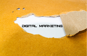 Digital Marketing Trends and How to Make the Most out of Them