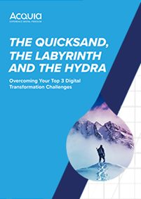 The Quicksand, The Labyrinth and The Hydra: Overcoming Your Top 3 Digital Transformation Challenges Share