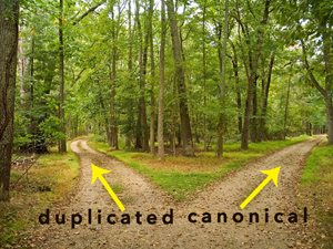 What's a Canonical URL?  When and How to Use It