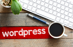 Headless Wordpress - Designing A Wordpress Site Without A Theme