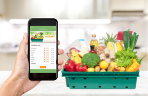 Grow Your Customer Base by Taking Your Traditional Grocery Business Online