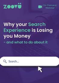 Why your Search Experience is Losing you Money - and what to do about it