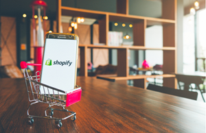 Ensure Full-Fledged Ecommerce Development With Shopify
