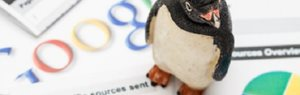 New Google Penguin Update Imminent