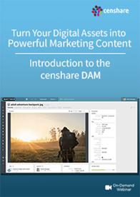 Introduction to the censhare DAM