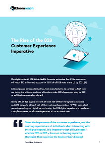 The Rise of the B2B Customer Experience Imperative