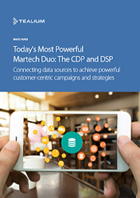 Today's Most Powerful Martech Duo: The CDP and DSP