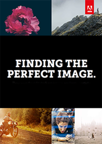 Find The Perfect Image - Three ways the right stock service can accelerate creativity