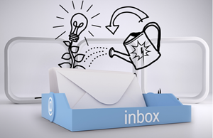 How to Nurture and Grow your Email Database
