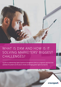 What Is Digital Experience Management and How Is It Solving Marketers' Challenges?