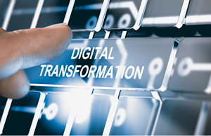 Digital Transformation and Innovation; A Perspective on Talent
