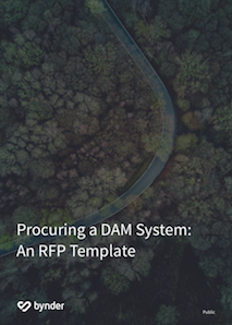 Digital Asset Management RFP template