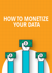 6 Steps to Monetizing Your Data