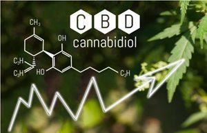 5 Digital Marketing Tips to Grow a CBD Brand