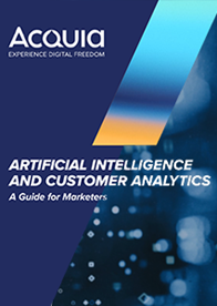 Artificial Intelligence and Customer Analytics: A Guide for Marketers