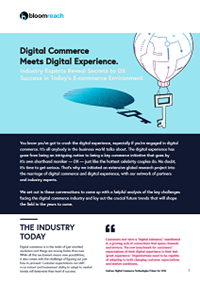 Digital Commerce Meets Digital Experience