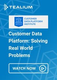 Customer Data Platform: Solving Real World Problems