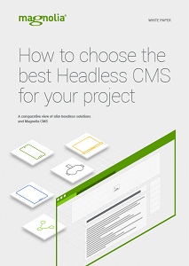 How to Choose the Best Headless CMS for Your Project