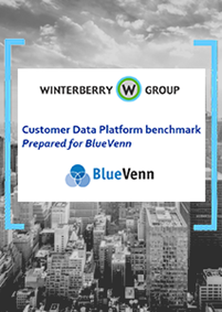 Winterberry Group's Customer Data Platform Benchmark Report