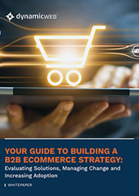 Your Guide to Building a B2B eCommerce Strategy