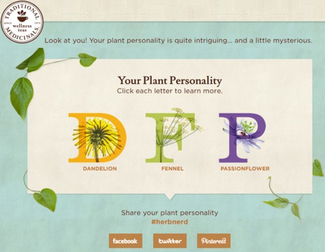 Traditional_Medicinals_Plant_Personality_Quiz_475px.jpg